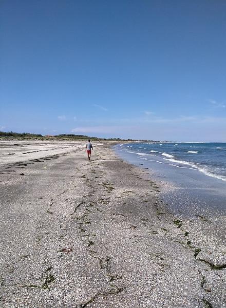 alberoni-spiaggia